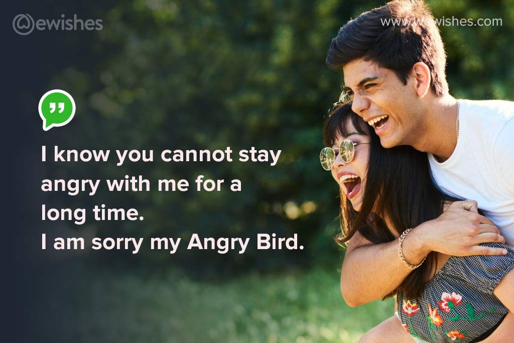 Funny Sorry Messages for Girlfriend, I am sorry my Angry Bird.