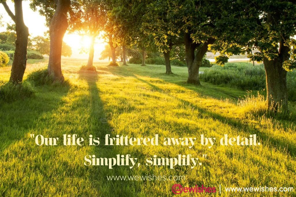 National Simplicity Day Quotes