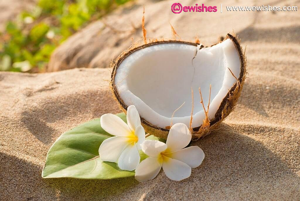 World Coconut Day Wishes