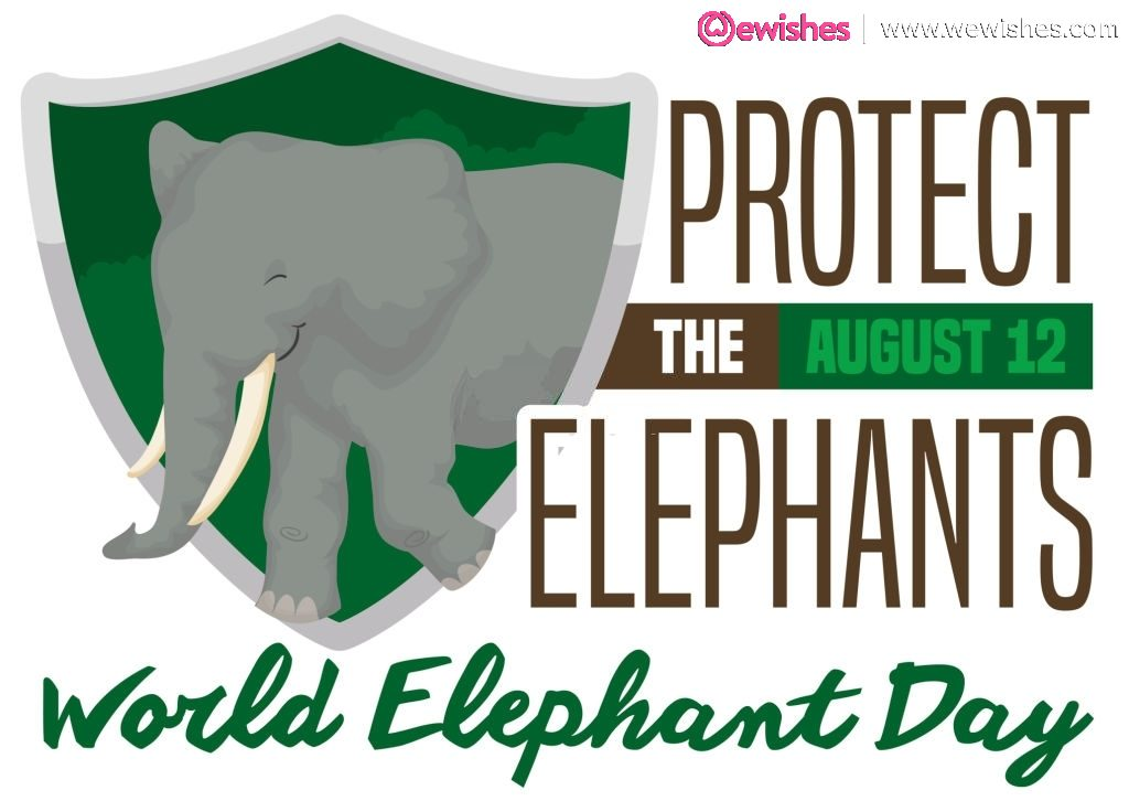World Elephant Day 12th august